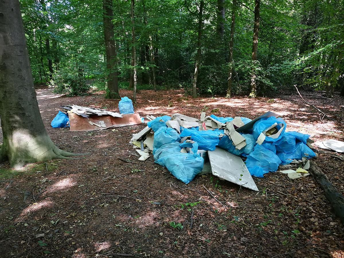 Wilde Müllkippe im Stadtwald